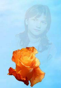 Предивней роз