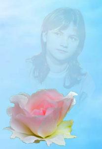 Ранняя роза