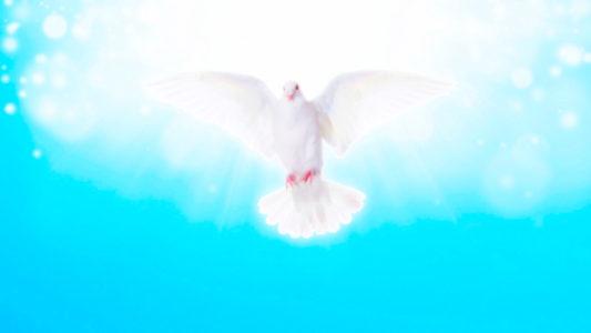 Пресвятой Дух